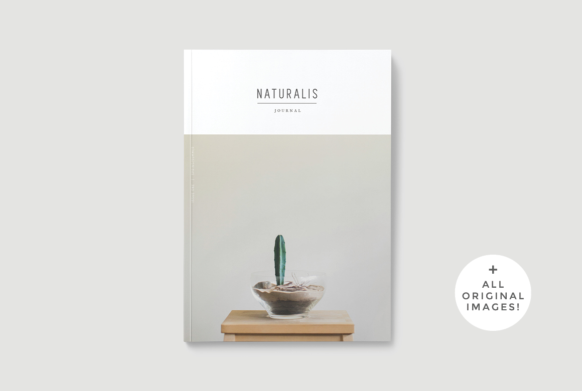naturalis a lookbook templateforty6and2